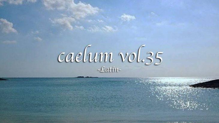 caelum Vol.35